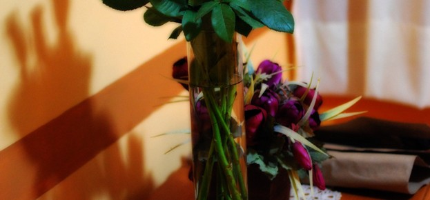 flores de bienvenida