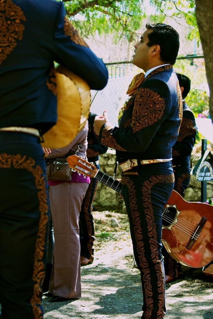 cimitario13