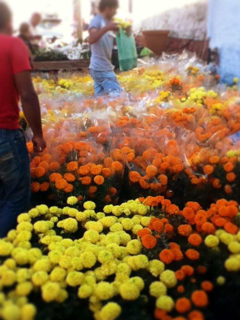 2012altars-marigolds-15