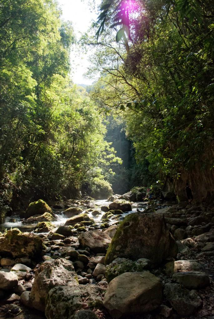 Pinal-de-Anoles-27