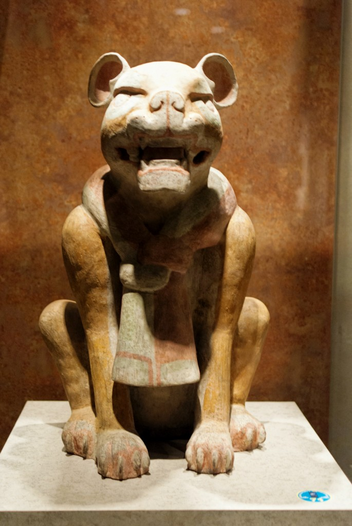 anthropology-museum-14