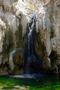 bosque_emeraldfalls