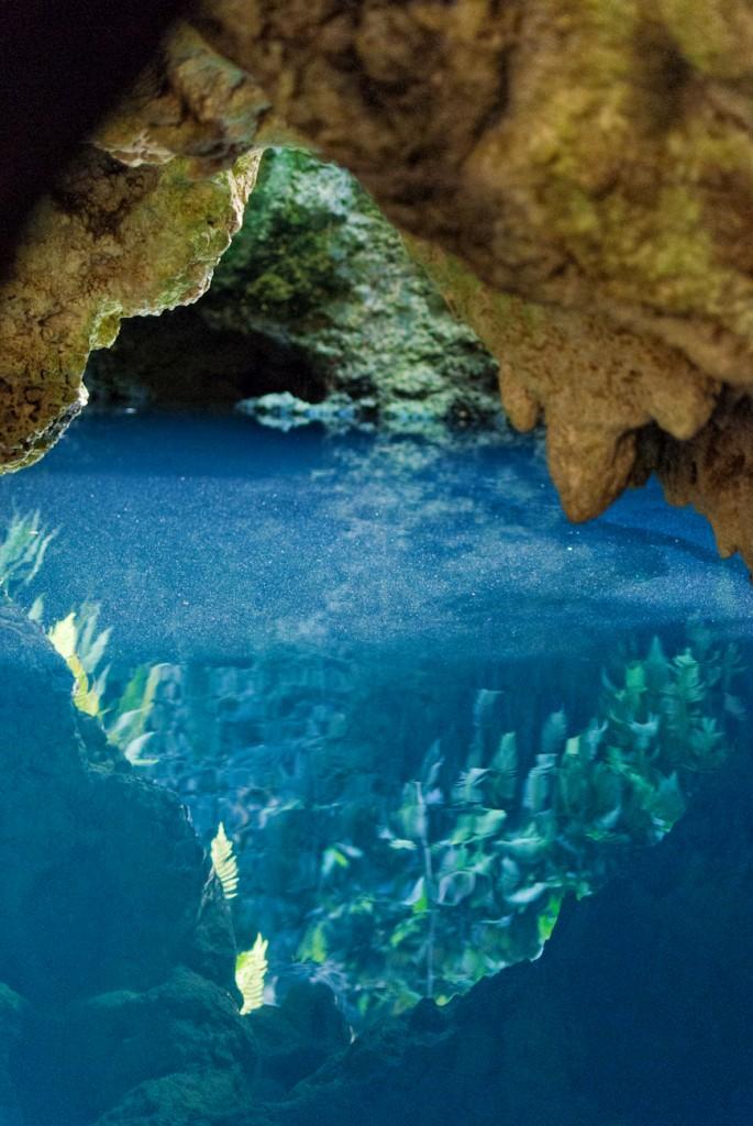 cenotes-6