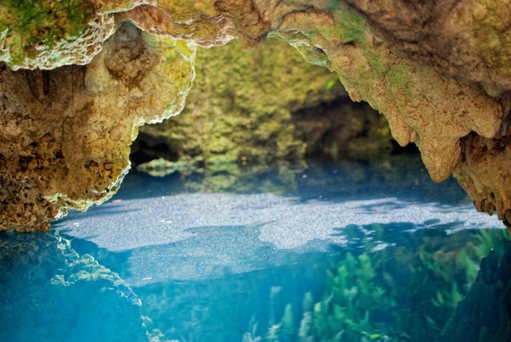 cenotes-8