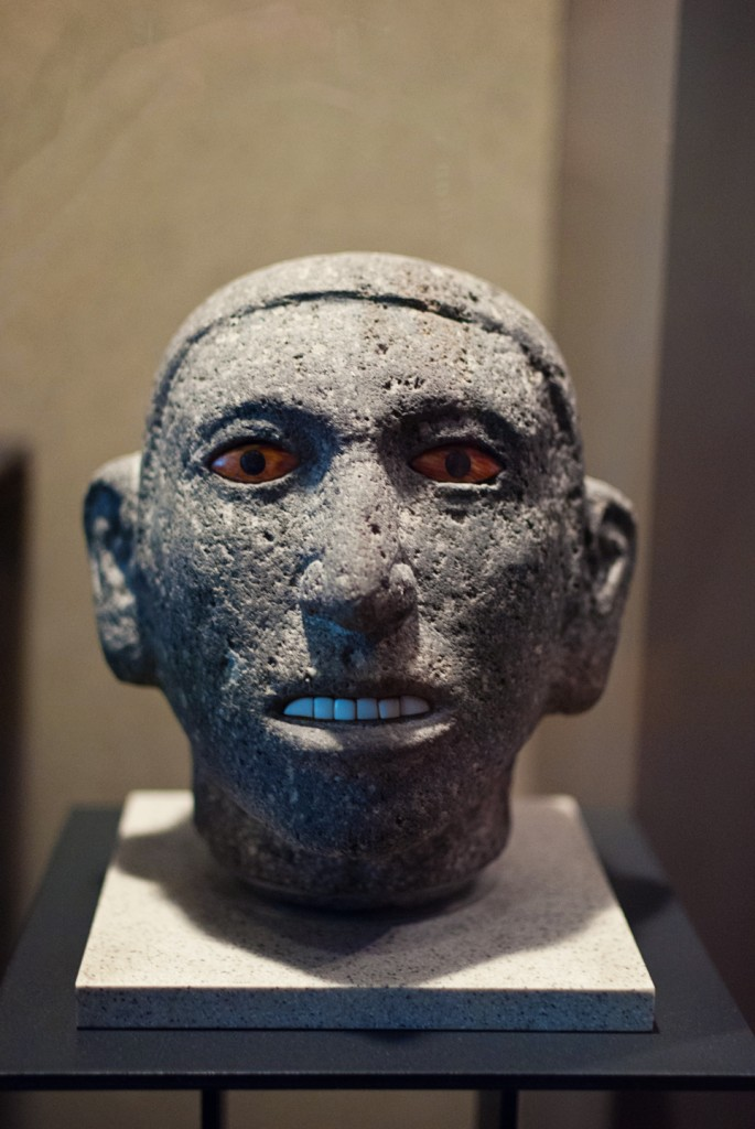 anthropology-museum-11